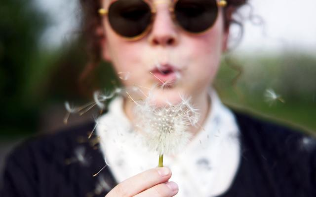 Making a wish by blowing a dandelion clock