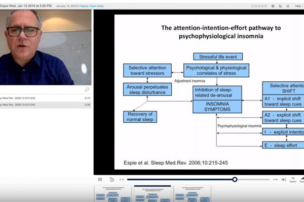 Screen grab from a lecture recorded using Replay software showing Professor Colin Espie and the flowchart he is explaining