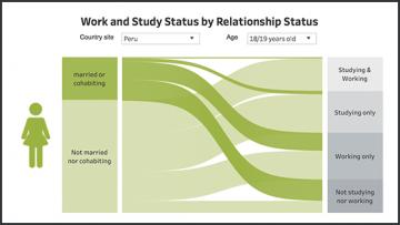 a data visualisation on work and study status with a female icon on the left